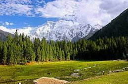 Northern Areas of Pakistan,Fairytale meadows